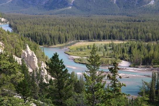Banff Pinnacles