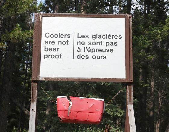Bear wise Canada